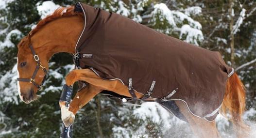 couverture-cheval-horseware.jpg